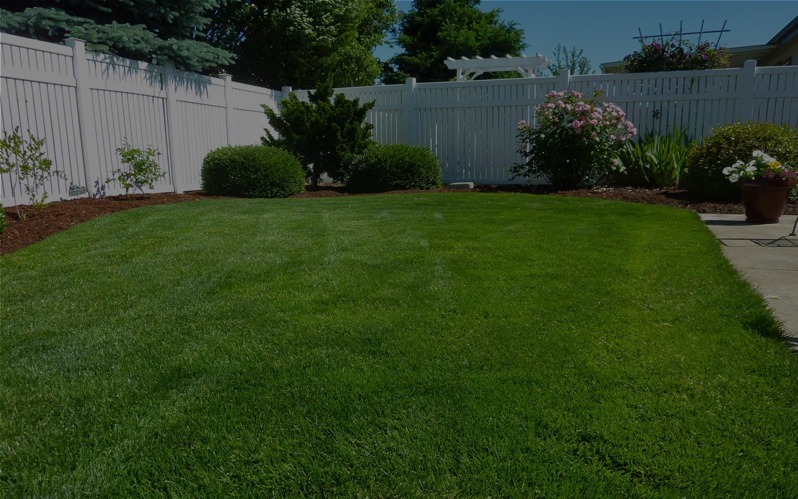 Get A Free Quote For An Outstanding Lawn Service In South Carolina