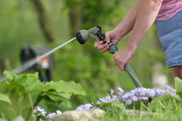 Myrtle Beach landscaping tips to help you get the most value for your home