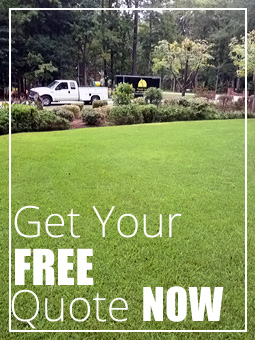Myrtle Beach Landscaping Quote