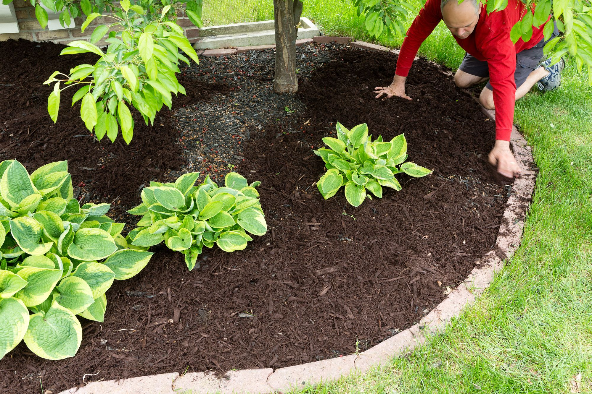 The Secret to a Successful Home Landscaping Is Fertilizer Treatment