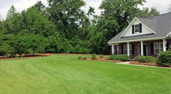 Super-Natural Landscaping Services in South Carolina