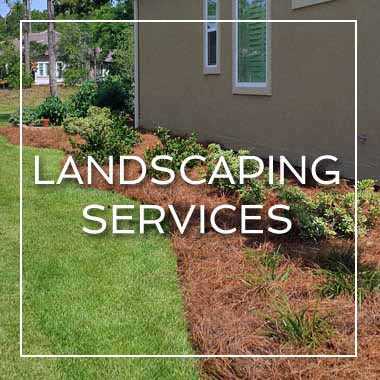 Myrtle Beach Landscaping Services